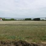 Kecskemét-Hetényegyházán eladó egy 1,6 hektáros földterület. Építési telkek kialakítására is alkalmas.